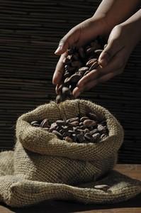 Натуральное какао-масло