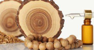 Сандаловое дерево и эфирное масло